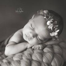 Julia Kaplan Photography